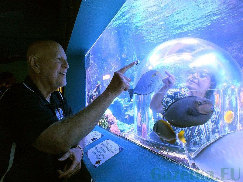 """A do tego akwarium można wejść """"na sucho"""". Verna w środku, a Jim na zewnątrz oglądają tego samego ślimaka :)"""